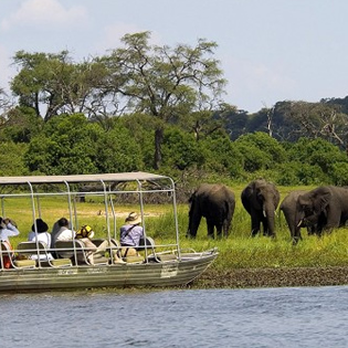 Chobe Wildlife Safari Day Trip